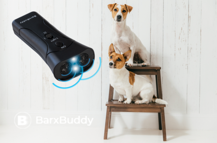 Is BarxBuddy The Best Way To Train Your Dog?