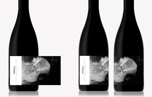Tupelo Wines by Mash Design