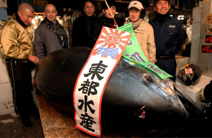 World's Most Expensive Tuna Sold at Auction