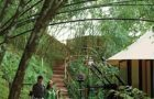 Four Seasons Tented Camp Golden Triangle Luxury Resort (33)