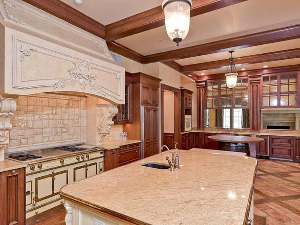 Incredibly Luxurious Mansion in Hickory Creek (22)