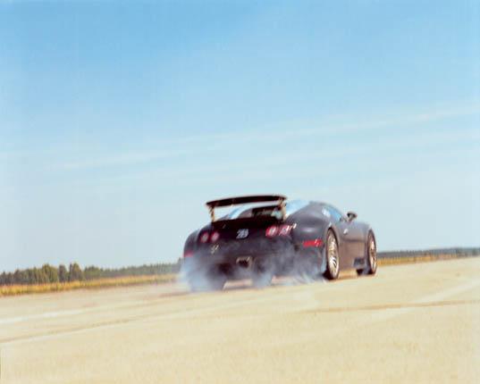 Bugatti Veyron 16.4 (80)