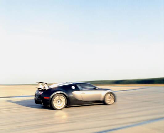 Bugatti Veyron 16.4 (79)