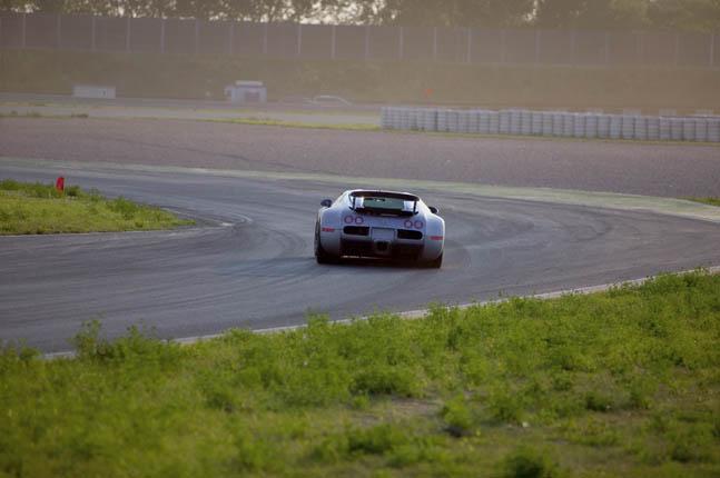 Bugatti Veyron 16.4 (83)