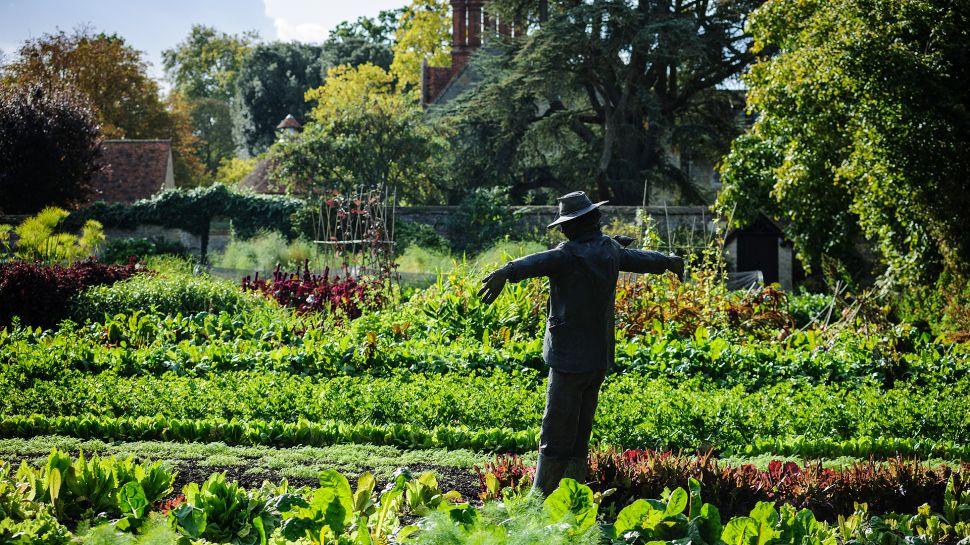 Belmond Le Manoir Aux Quat'Saisons In Oxfordshire (1)