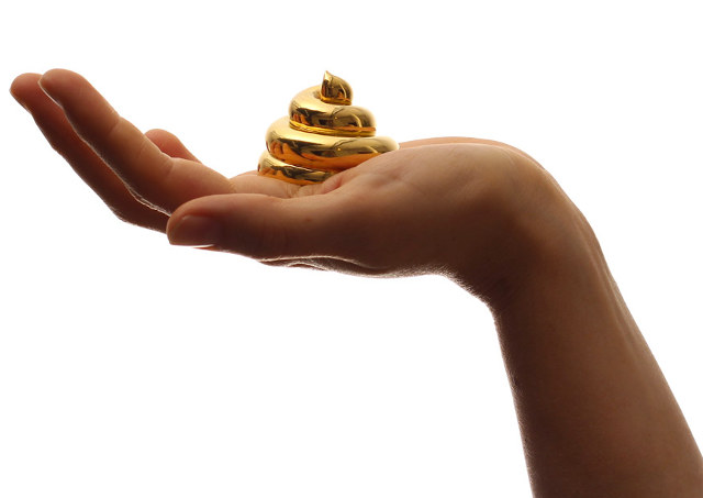 Gold-Plated Turd Sculpture Respects Geometric Principles 1